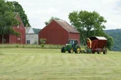 как написать бизнес-план образец сельское хозяйство - фото 2